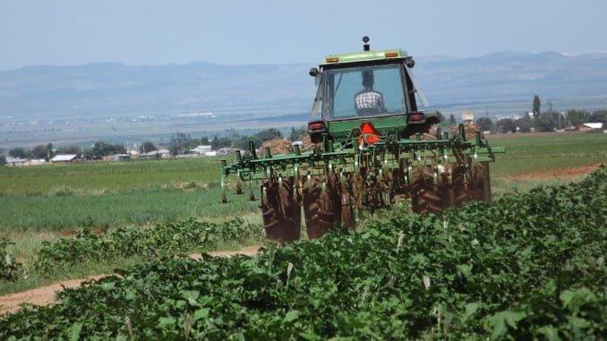 Huelva ha registrado en mayo 1.515 parados más en Agricultura