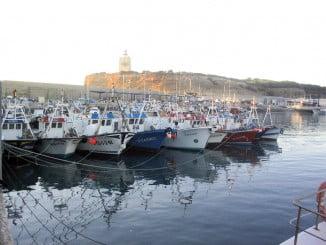Se abre el caladero del Golfo de Cádiz, aunque con limitaciones