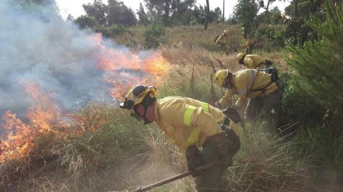 Bomberos trabajando en la extinción de un incendio en Cartaya