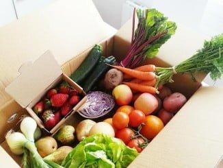 Las frutas, verduras y hortalizas son ricas en vitaminas y contienen agua, tan importante ante el calor