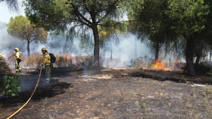 Bomberos del Infoca tratan de sofocar un incendio en Aljaraque