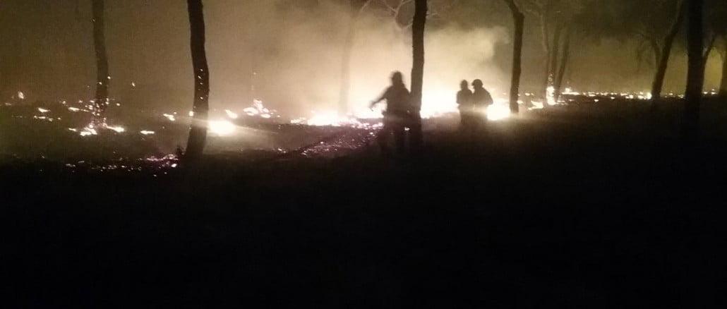 Medios aéreos del Gobierno se suman a los efectivos de la Junta para extinguir el gran incendio de Moguer