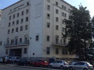 Las garrapatas han aparecido en los juzgados situados frente a la Audiencia Provincial