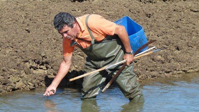 El objetivo es posibilitar el adelanto de la jubilación de los mariscaodres