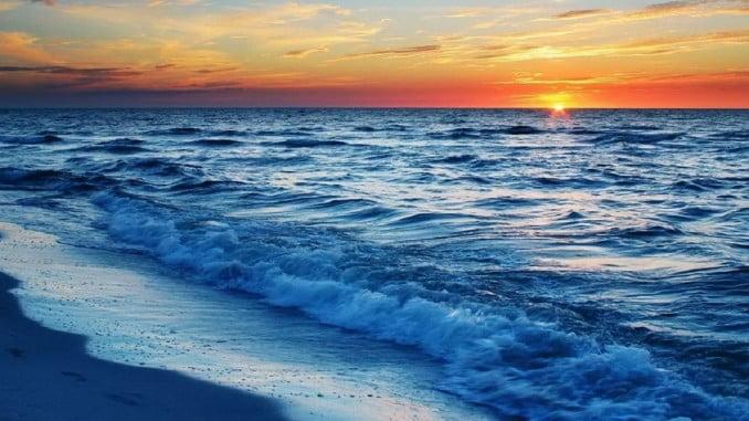 Hoy se celebra el Día Mundial de los Océanos