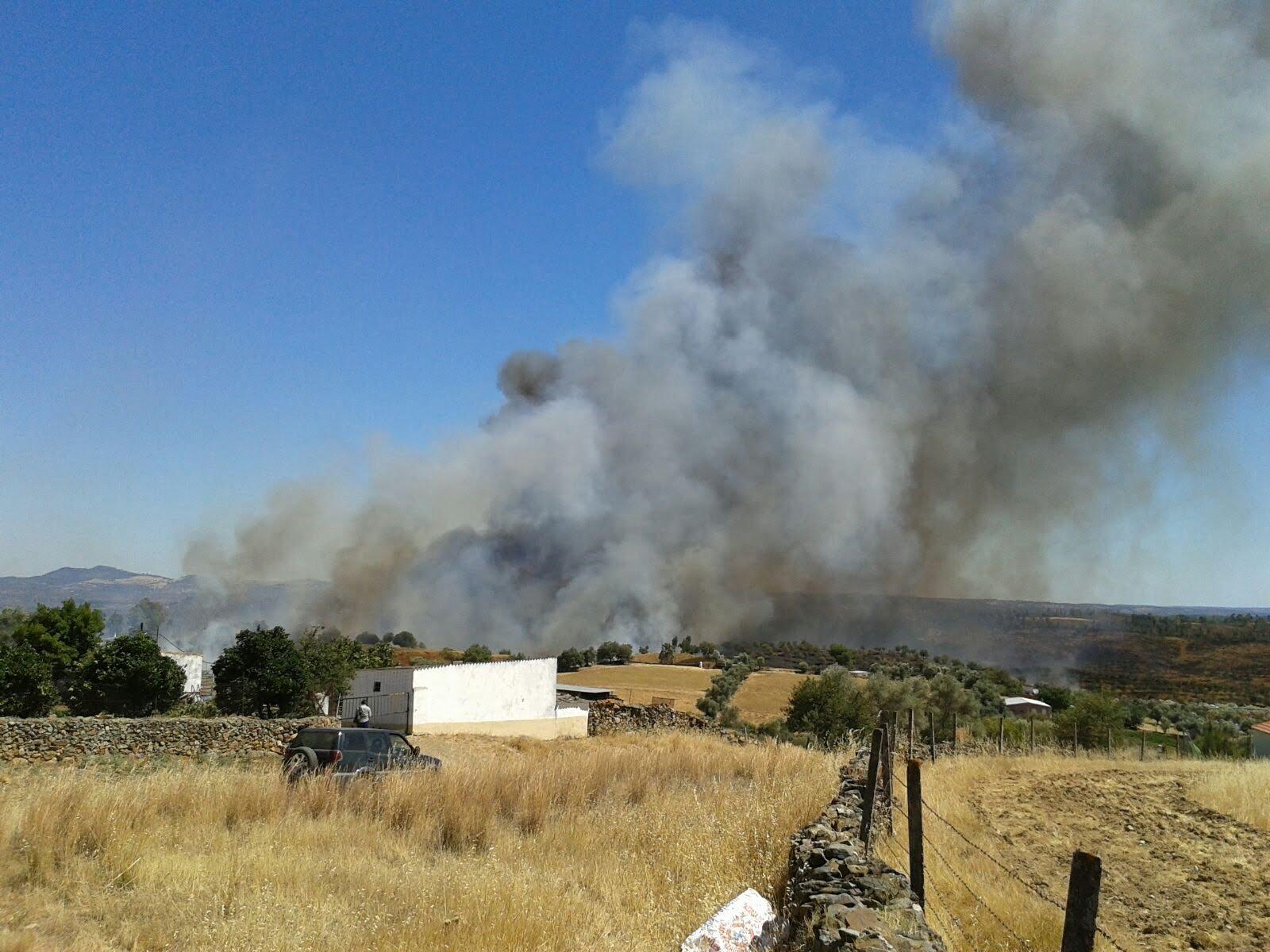 Foto distribuida desde el Plan Infoca del incendio.