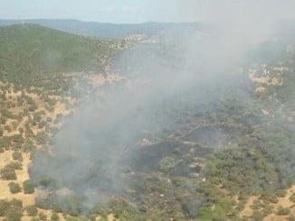 Imagen de un incendio en el término municipal de Aroche
