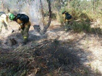 Bomberos del Infoca trabajando por tierra tras estabilizarse el incendio