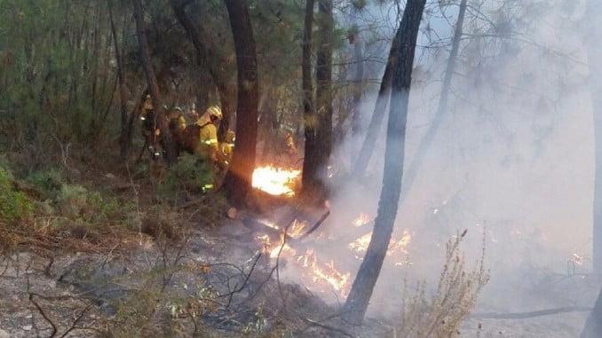 Los bomberos trabajando sobre el terreno en el incendio de Calañas
