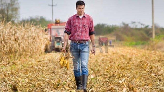 Los proyectos emprendedores de los jóvenes agricultores serán premiados