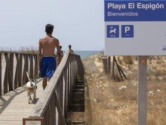 La Playa de El Espigón tiene más zonas para la estancia y circulación de mascotas