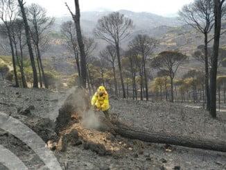 Los bomberos realizan trabajos de neutralización en los puntos calientes