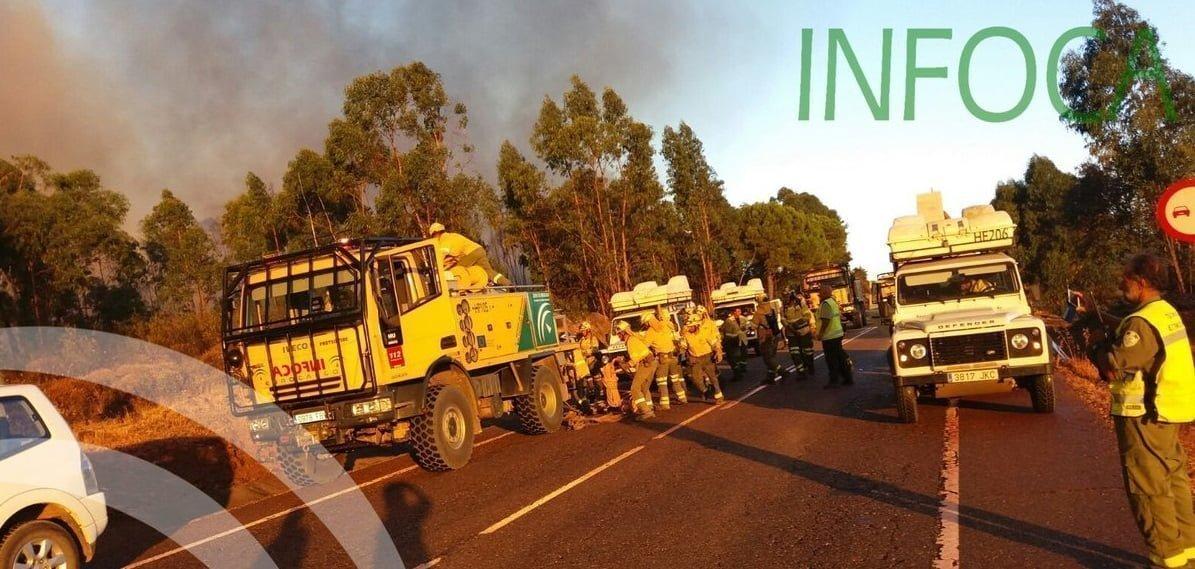 Hasta 130 bomberos forestales trabajan en la extinción del incendio