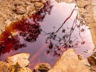 Las obras de restauración ecológica  en los cauces de la cuenca del Odiel afectados por el vertido de aguas ácidas procedentes de la corta minera abandonada de La Zarza se prolongarán durante el verano
