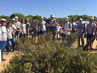Voluntarios de la Red Natura 2000 de Doñana en la recogida de semillas
