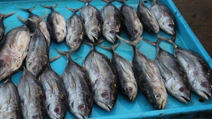 La mayoría de las ventas de pescado y marisco al exterior se dirigen a Italia y Portugal