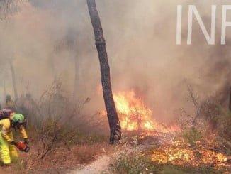 El dispositivo trabajando intensamente en el incendio de Cartaya