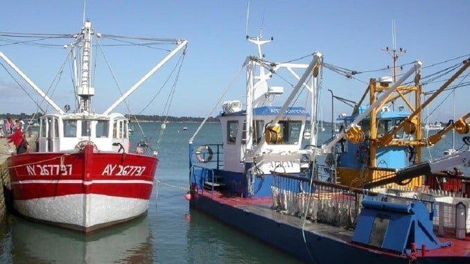El Ministerio de Agricultura y Pesca convoca ayudas para los propietarios de buques y pescadores
