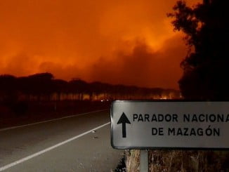El incendio de Moguer también produjo daños en las carreteras de la zona