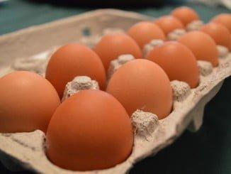 """Facua pide la """"máxima transparencia"""" en la crisis de los huevos contaminados por fipronil"""