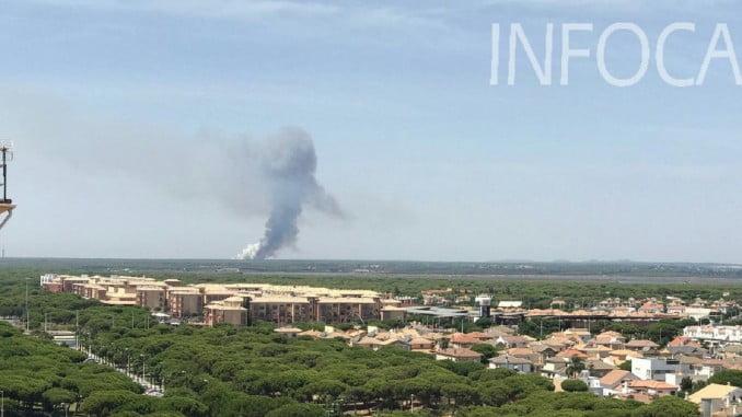 Imagen del incendio de Cartaya facilitada por el Infoca
