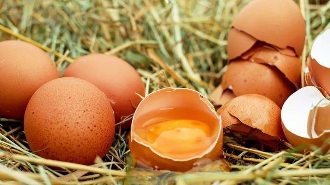 """Bruselas se plantea expedientar a países que no informaron """"inmediatamente"""" sobre los huevos contaminados"""