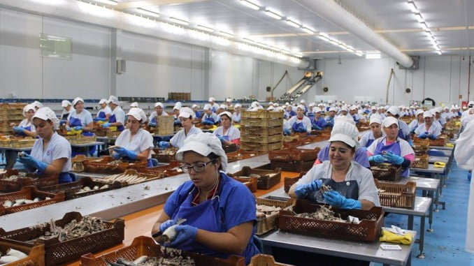 Entre otras cuestiones, se hablará de la singular industria conservera donde ha jugado un papel preponderante la mujer