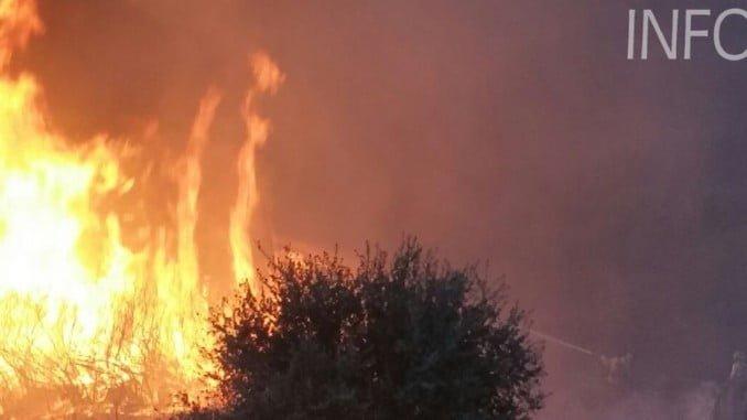 Grupos de intervención de Granada (de CEDEFOS de PuertoLobo y SierraNevada) trabajan en el incendio de La Granada (Foto: Infoca)