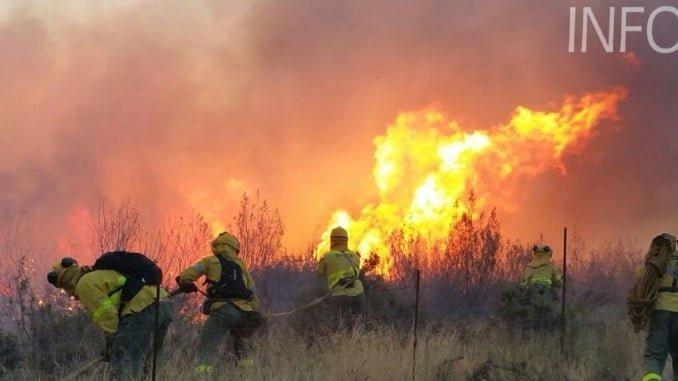 Los bomberos se emplean a fondo en la extinción del fuego en La Granada (Foto: Infoca)