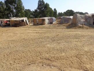 Asentamiento chabolista de Las Metas