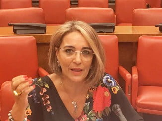 La diputada socialista Pepa González Bayo en el Congreso