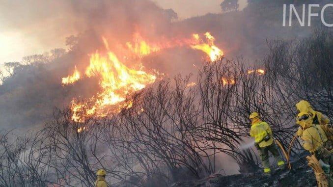 150 bomberos se emplean a fondo para combatir las llamas en La Granada (Foto: Infoca)