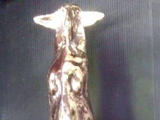 La escultura de bronce traslada la pureza de la raza ovina