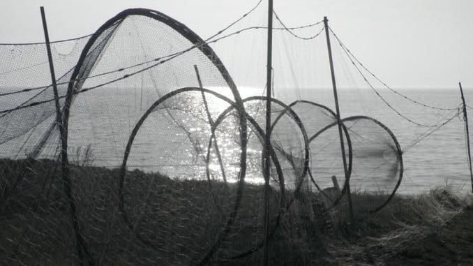 El Gobierno busca favorecer la interlocución con las entidades asociativas del sector pesquero