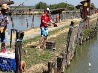 El centro de ocio y de cultivo acuícola de Punta Umbría Salinas del Astur