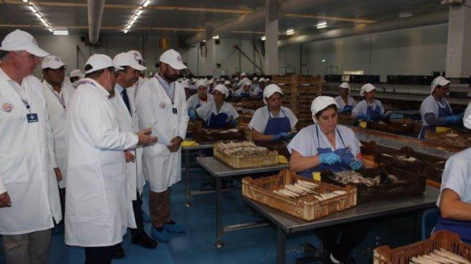 Durante su visita a Huelva, el consejero ha visitado las empresas Pescatún Isleña SL, ubicada en Lepe (Huelva) y dedicada a la elaboración de mojama de atún, y Unión Salazonera Isleña (Usisa), con sede en Isla Cristina. En la imagen, en Usisa