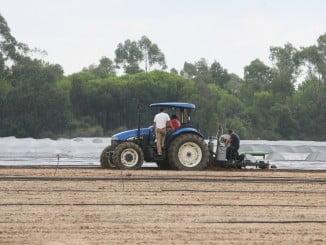 El sector agrícola es el que más accidentes mortales registra en la provincia, según UGT