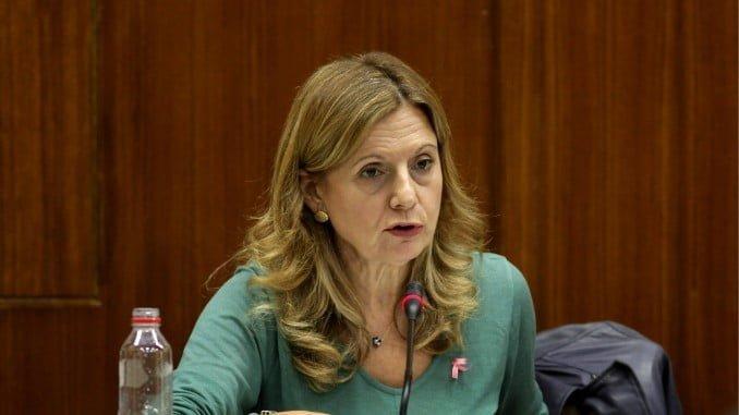 La consejera de Salud explica en comisión parlamentaria los presupuestos de su departamento para 2018