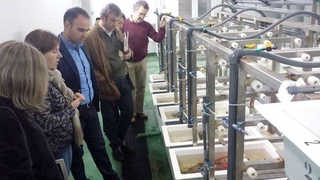 """El delegado de Agricultura durante una visita a Ifapa """"Agua del Pino"""", en Huelva"""