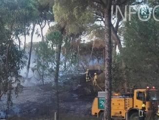 Efectivos del Infoca sofocando el incendio de Moguer (Foto: Infoca)