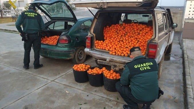 Los agentes han intervenido  800 kg.de fruta