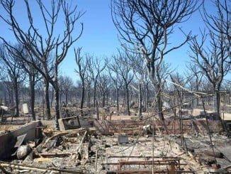 La ministra explicará en Huelva los trabajos realizados tras el devastador incendio del 24 de junio