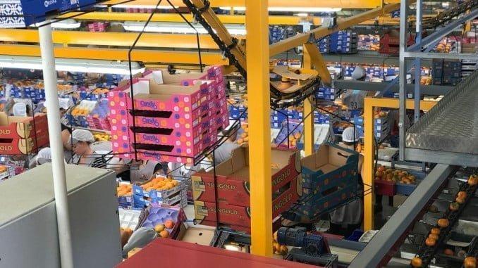 Huelva incrementa un 3,3% su volumen de exportación en 2016