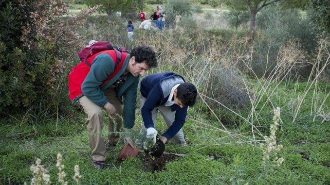 Los niños del Consejo Municipal Infantil plantan árboles en el Pulmón Verde de Huelva