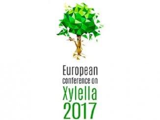 UPA participa en la Conferencia sobre la Xylella fastidiosa que se está desarrollando en Mallorca
