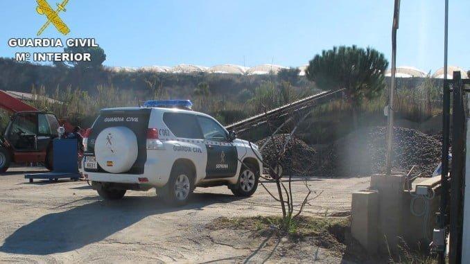 La Guardia Civil interviene las piñas de una empresa lepera