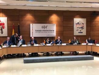 pleno del Consejo Interterritorial del Sistema Nacional de Salud celebrado ayer por la tarde en Madrid