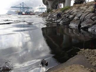 El descubrimiento permitirá establecer protocolos de actuación ante derrames de crudo en el litoral