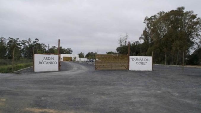 Jardines Dunas del Odiel, uno de los que componen la red de la Consejería para preservar y conservar las especies andaluzas