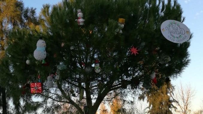 El árbol natural de Navidad está situado en la Plaza del Acebrón
